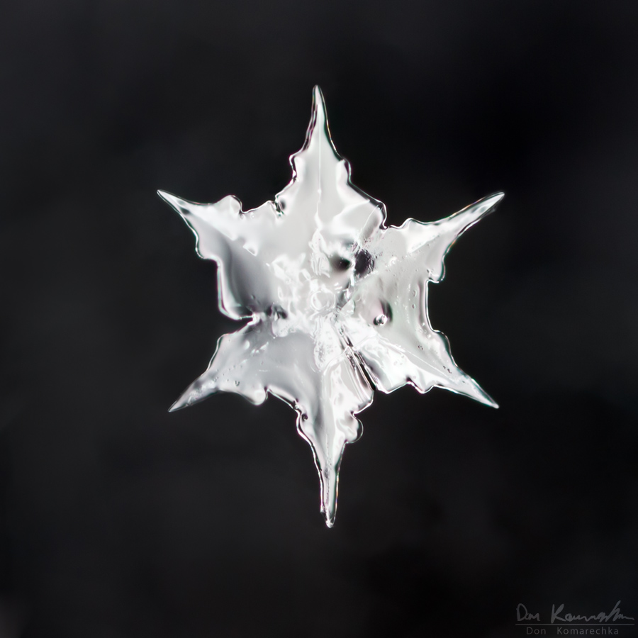 IMAGE: http://don.komarechka.com/wp-content/gallery/2010-2011-snowflakes-2/mg_3606.jpg