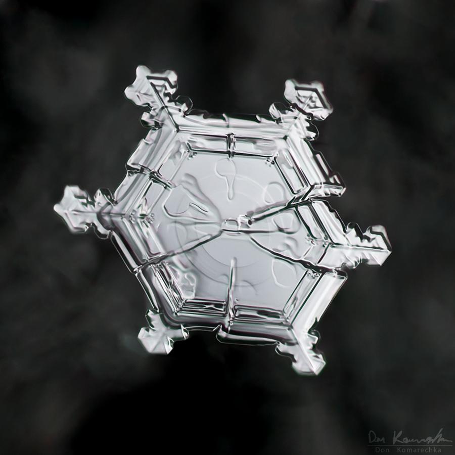 IMAGE: http://don.komarechka.com/wp-content/gallery/2010-2011-snowflakes-2/plate-circle.jpg