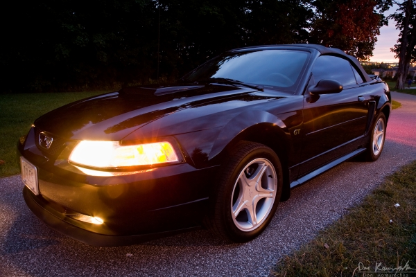 Mustang Front Angle