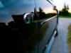 Mustang Side.jpg