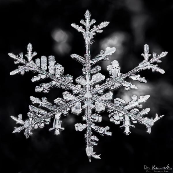 New Snowflake