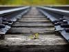 green-tracks