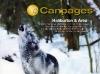 Canpages Haliburton Cover
