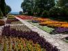 Balchik flower garden
